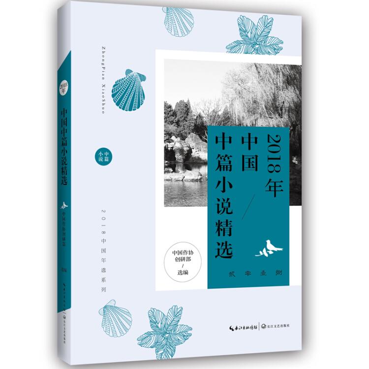 2018年中国中篇小说精选