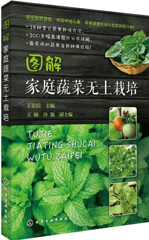 图解家庭蔬菜无土栽培