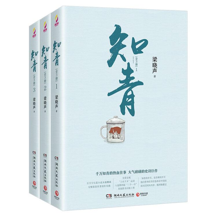知青(梁晓声经典文学作品全3册)