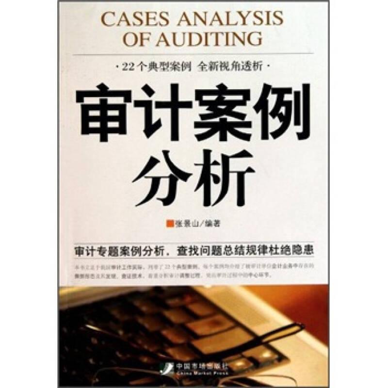 审计案例分析