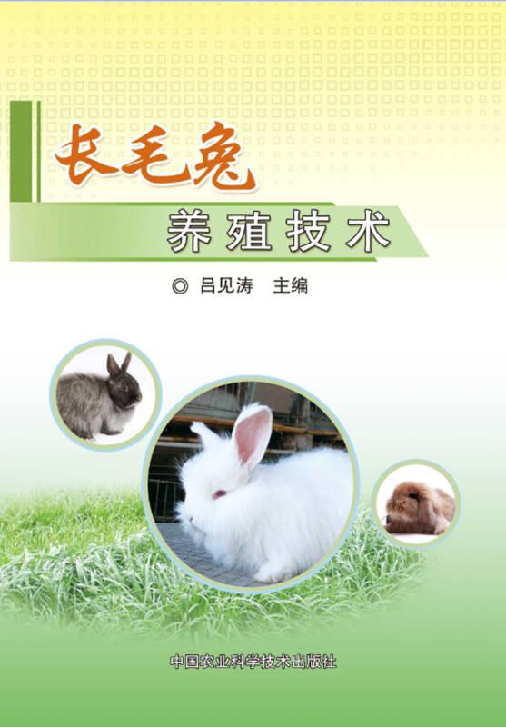 长毛兔养殖技术