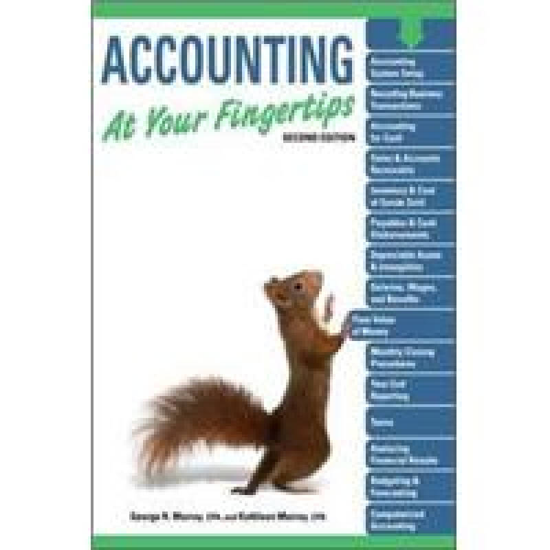 Accounting at Your Fingertips 2E
