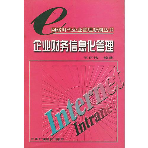 企业财务信息化管理——网络时代企业管理新潮丛书