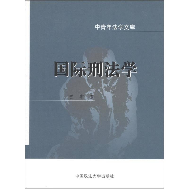国际刑法学/中青年法学文库