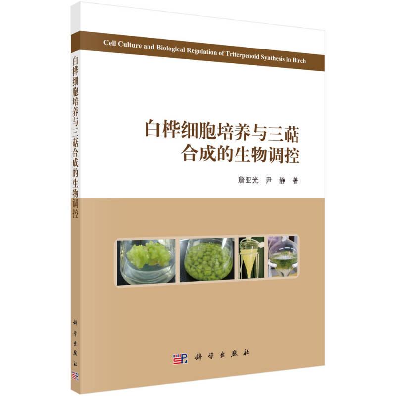 白桦细胞培养与三萜合成的生物调控