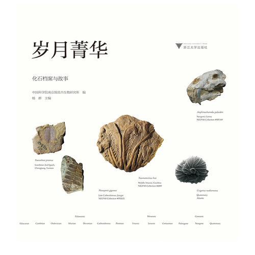 岁月菁华——化石档案与故事