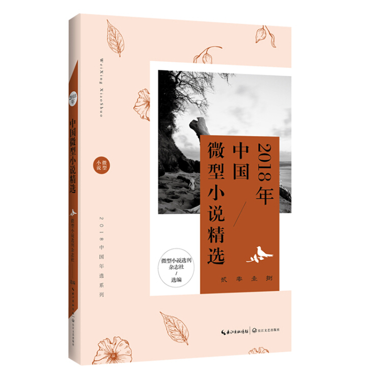 2018年中国微型小说精选