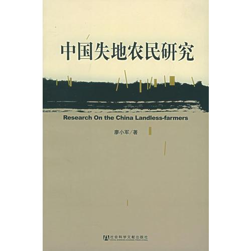 中国失地农民研究