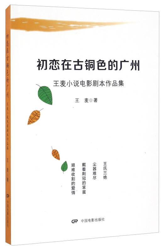 初恋在古铜色的广州 王麦小说电影剧本作品集