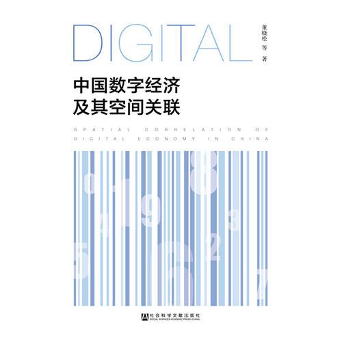 中国数字经济及其空间关联
