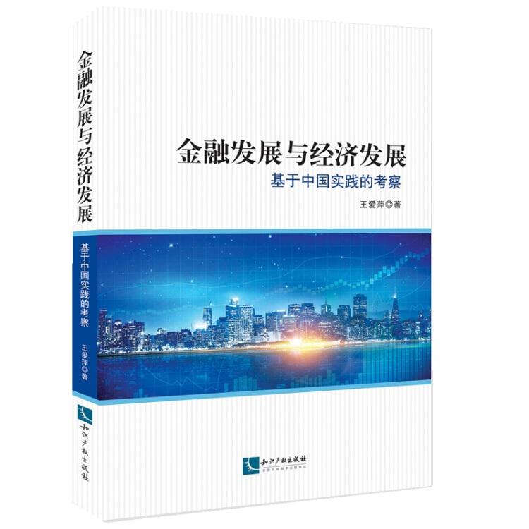 金融发展与经济发展:基于中国实践的考察