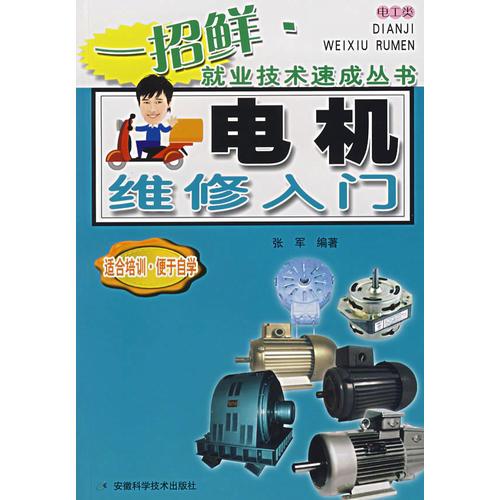 电机维修入门——一招鲜·就业技术速成丛书