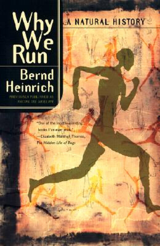 Why We Run 我们为什么奔跑