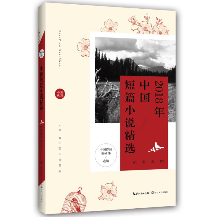 2018年中国短篇小说精选