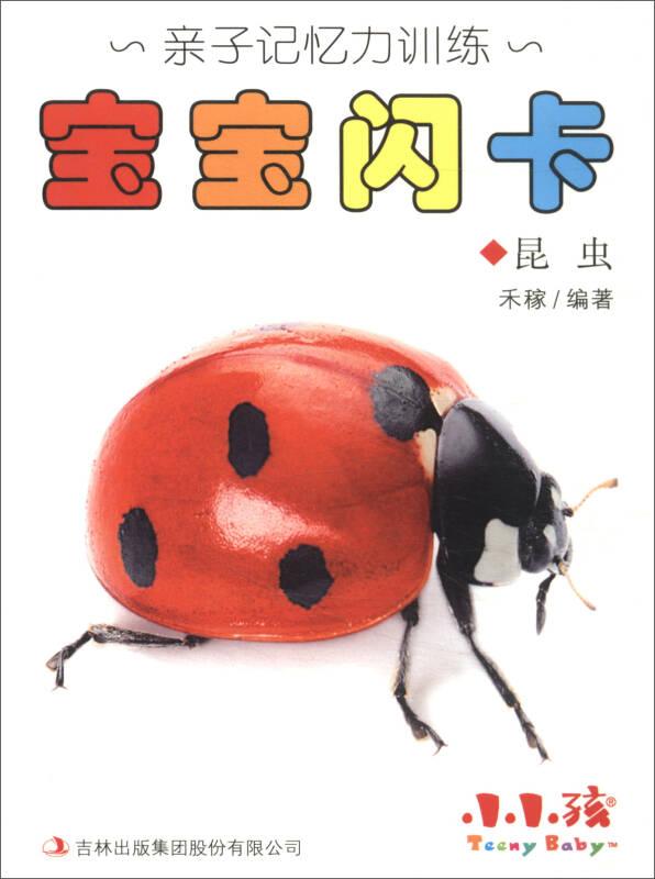 小小孩·亲子记忆力训练:宝宝闪卡(昆虫)