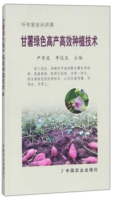 甘薯绿色高产高效种植技术/听专家田间讲课