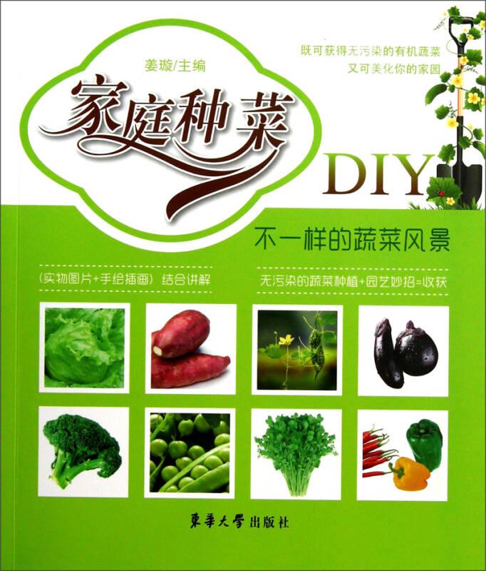 家庭种菜DIY:不一样的蔬菜风景