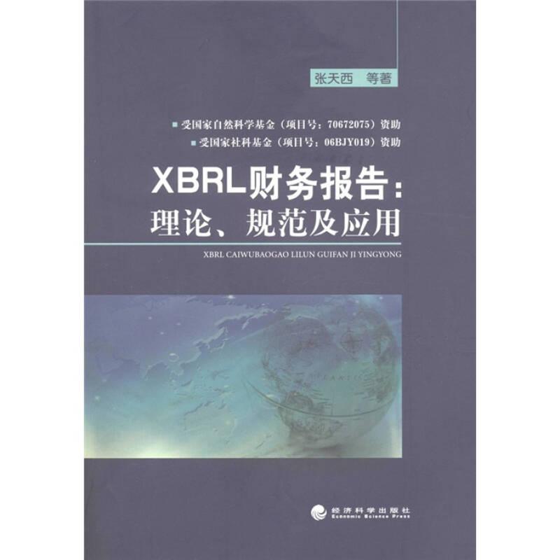 XBRL财务报告:理论、规范及应用