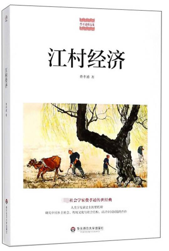 江村经济/费孝通精品集