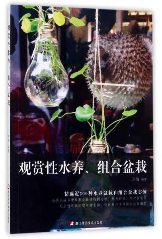 观赏性水养、组合盆栽