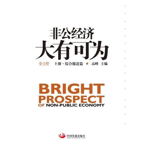 非公经济大有可为:全2册