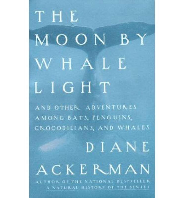 Moon by Whale Light: And Other Adventures Among