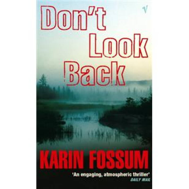Dont Look Back (An Inspector Sejer mystery)[向前看]