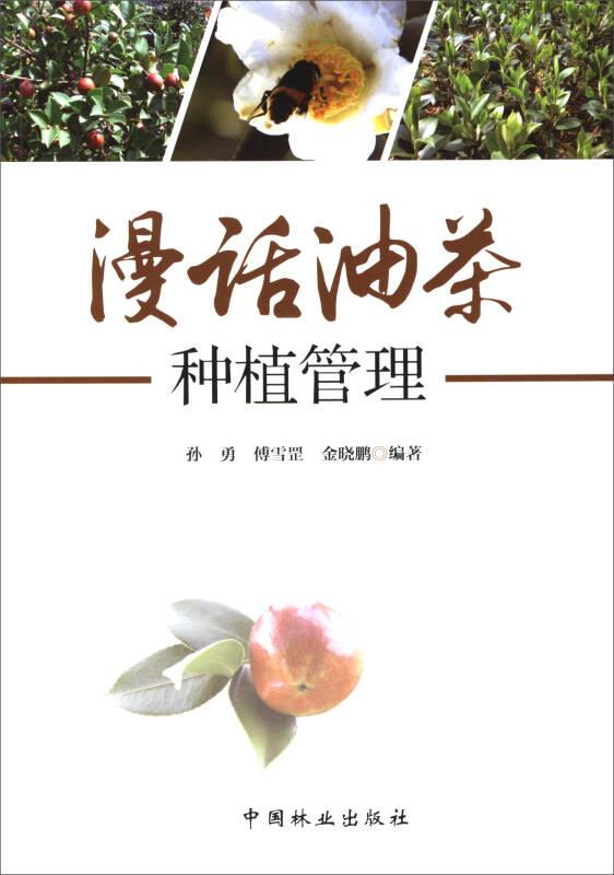 漫话油茶种植管理