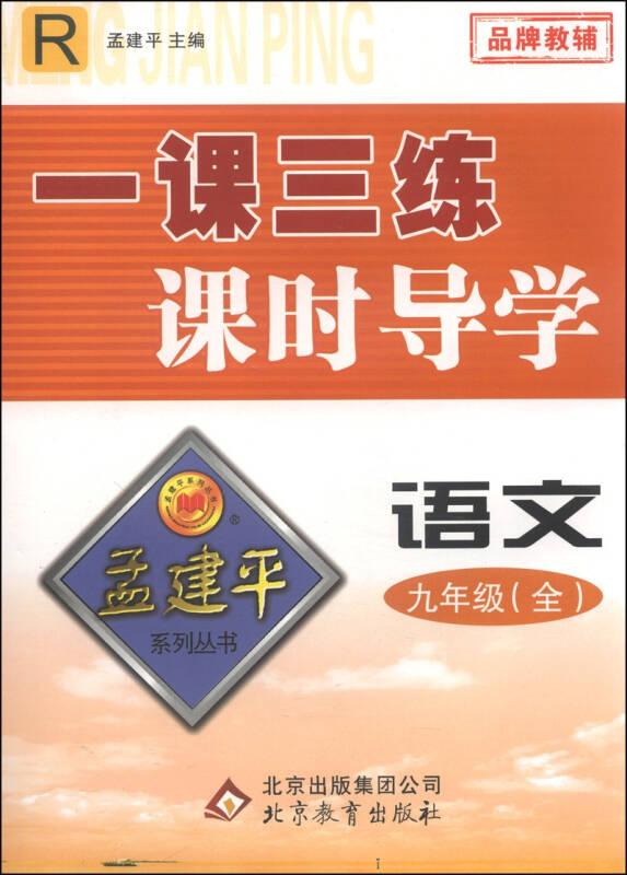 孟建平系列丛书·一课三练课时导学:语文(九年级全 R)
