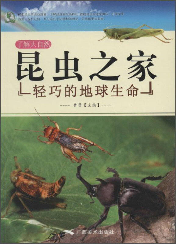 了解大自然 昆虫之家:轻巧的地球生命