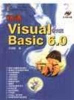 精通Visual Basic 6.0中文版