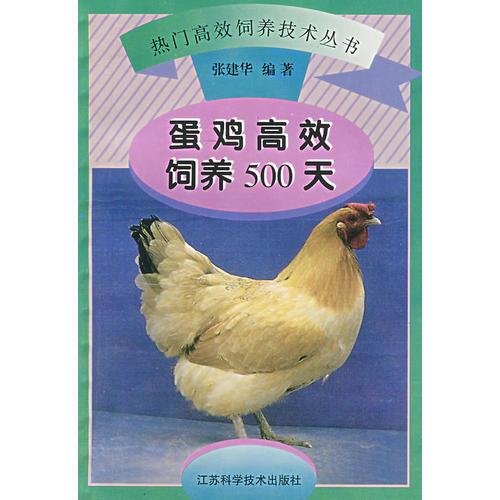 蛋鸡高效饲养500天