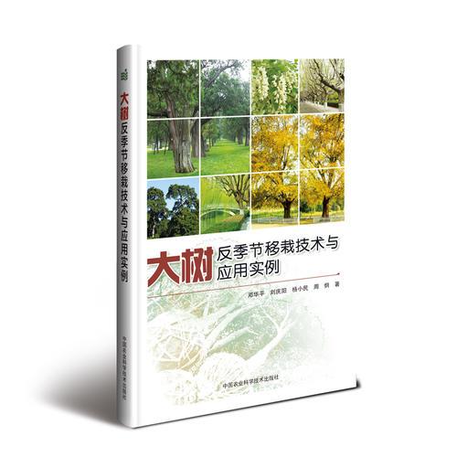 大树反季节移栽技术与应用实例