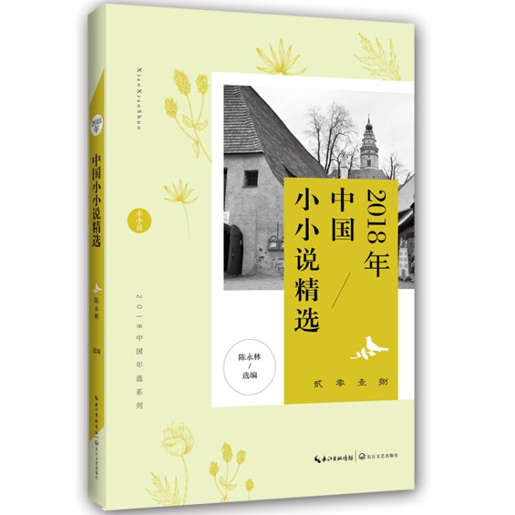 2018年中国小小说精选