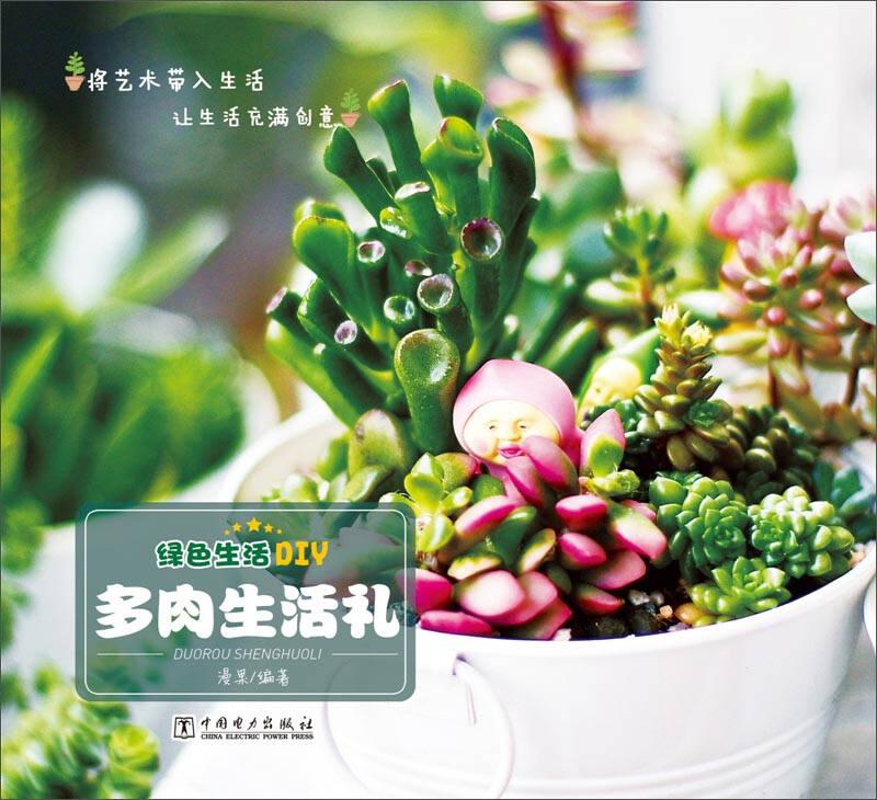 绿色生活DIY:多肉生活礼