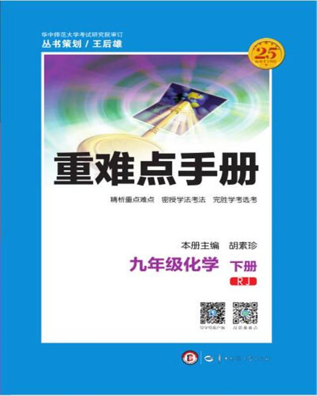 重难点手册 九年级化学 下册 RJ