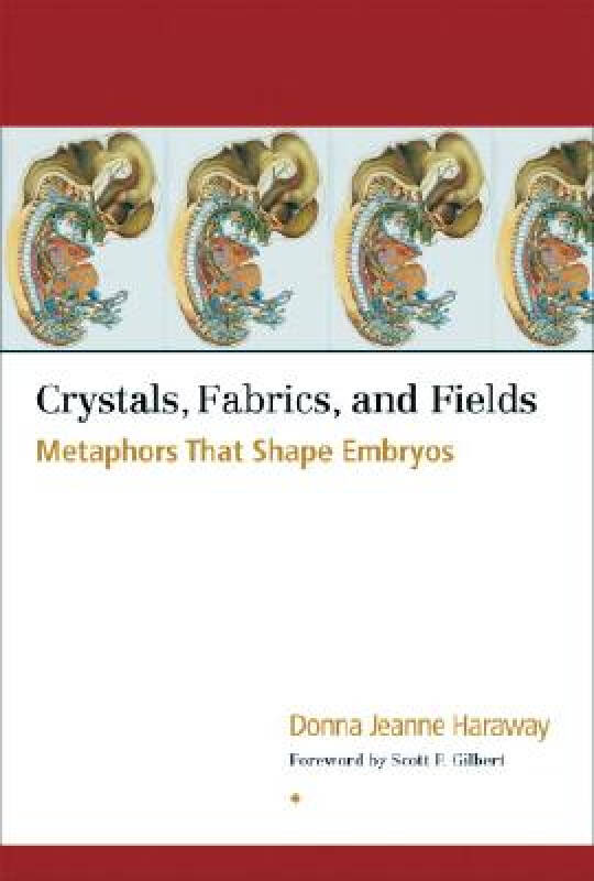 Crystals, Fabrics, and Fields: Metaphors That Shape Embryos