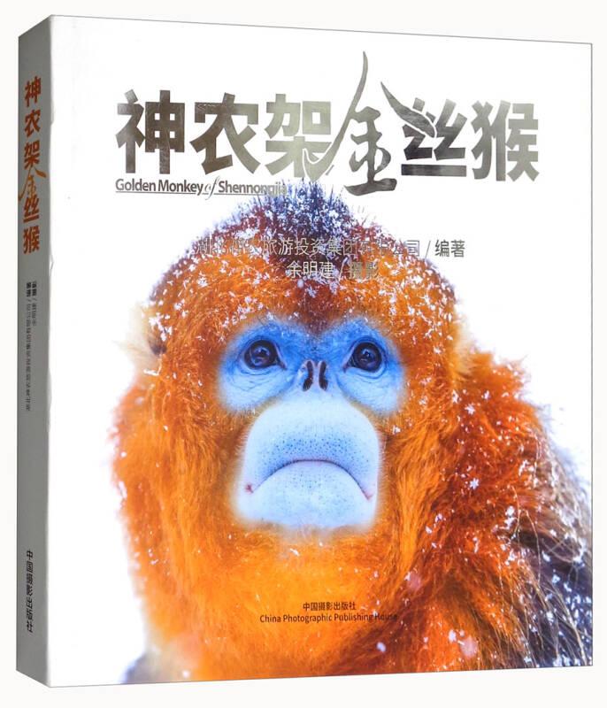 神农架金丝猴