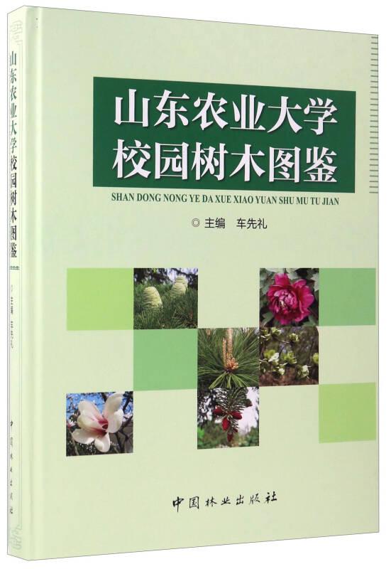 山东农业大学校园树木图鉴