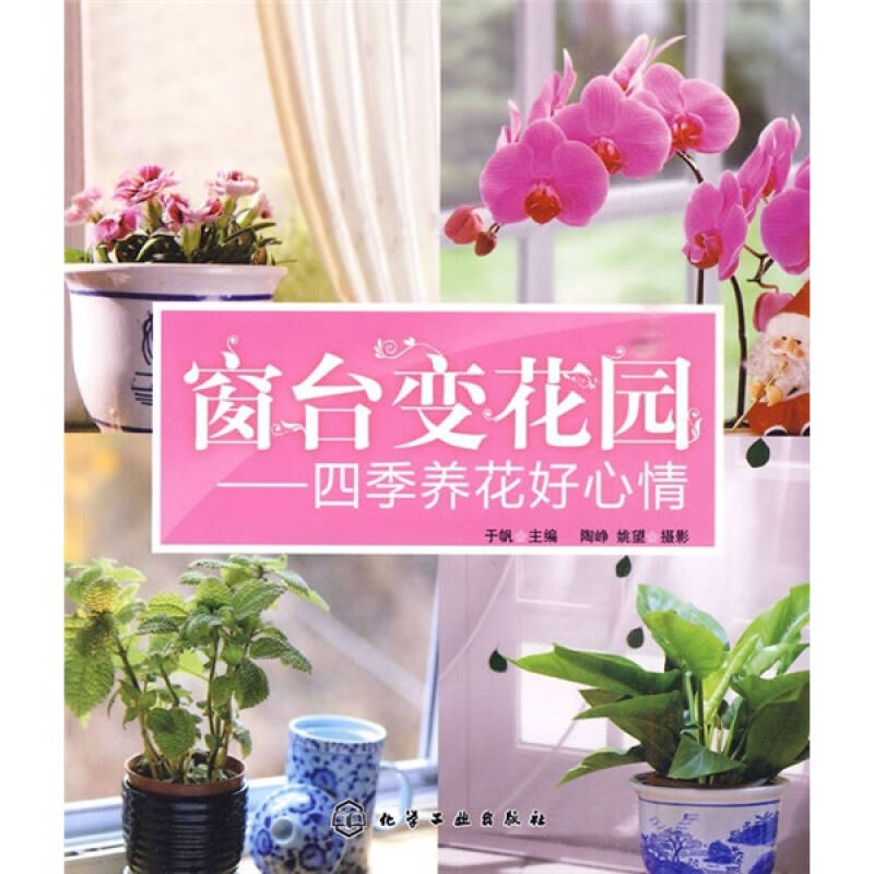 窗台变花园:四季养花好心情