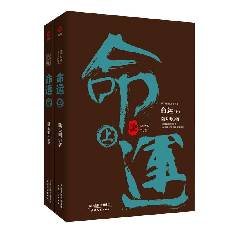 陆天明当代作品精选:命运(套装全2册)
