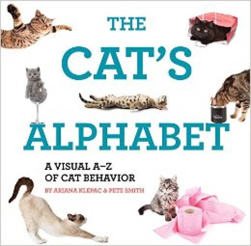 The Cat Alphabet  A Visual A-Z of Cat Behavior