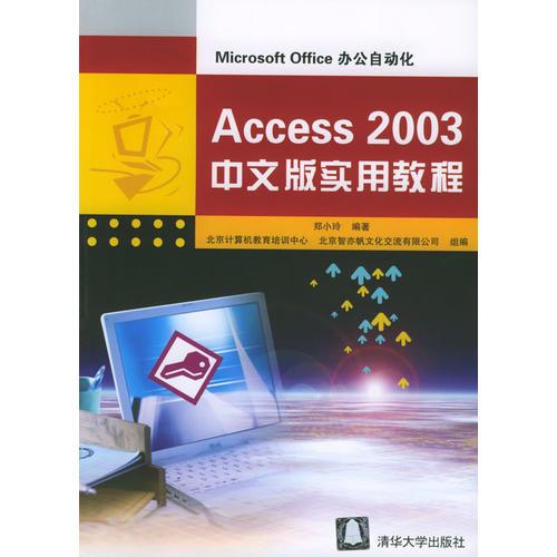 Access 2003中文版实用教程/Microsoft Office办公自动化
