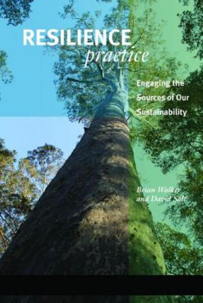 ResiliencePractice:BuildingCapacitytoAbsorbDisturbanceandMaintainFunction