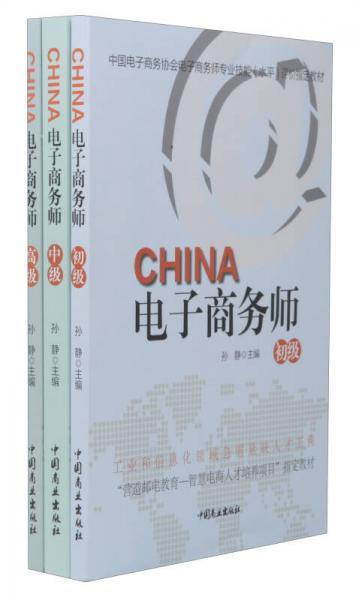 电子商务师(套装共3册)/中国电子商务协会电子商务师专业技能(水平)评价指定教材