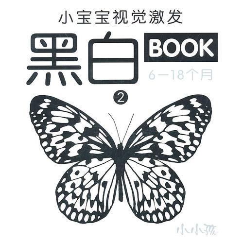 小宝宝视觉激发黑白BOOK  2  (6-18个月)