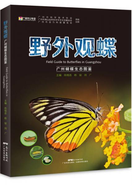 野外观蝶 广州蝴蝶生态图鉴
