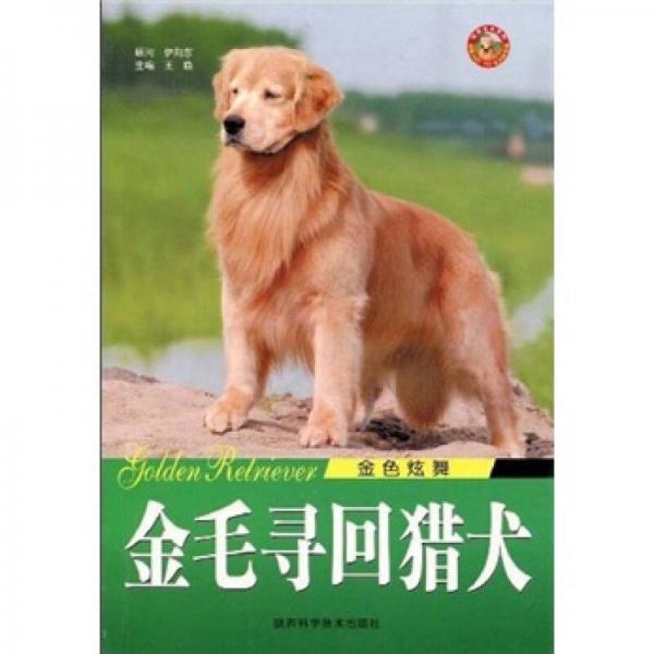 金色炫舞:金毛寻回猎犬