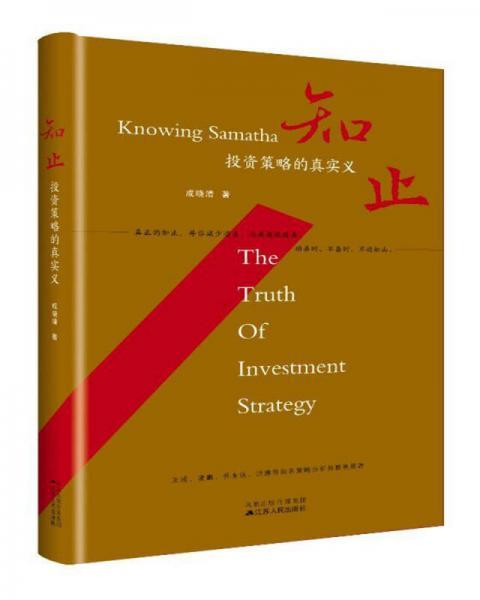 知止:投资策略的真实义(精装)