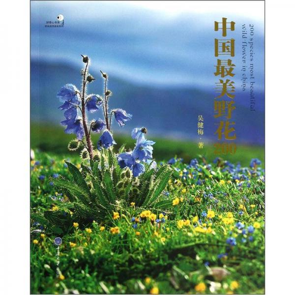 中国最美野花200